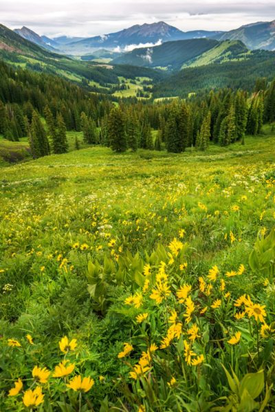 Crested Butte- Views out