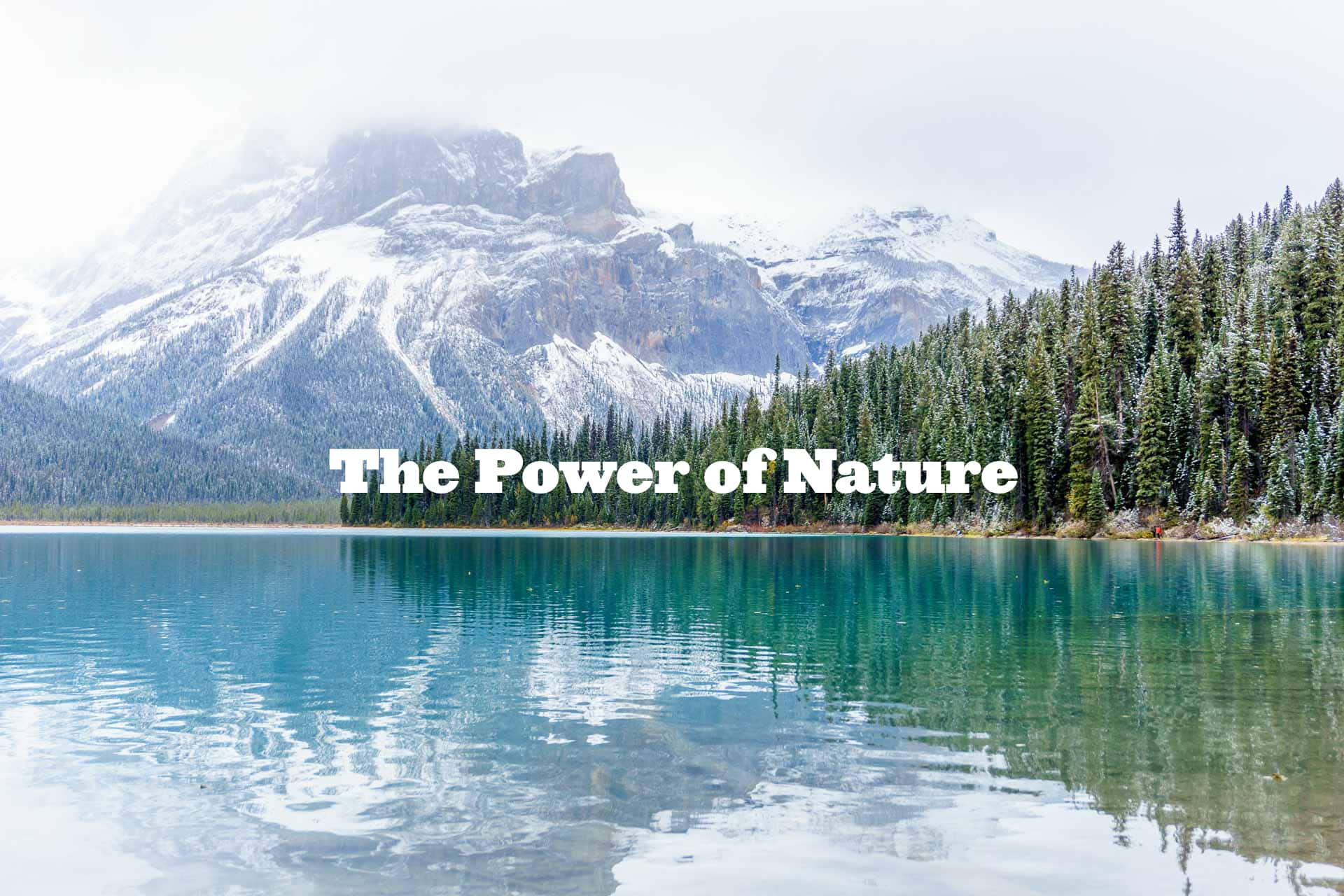 The Power of Nature